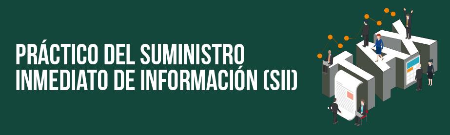 Práctico del suministro Inmediato de Información (SII)